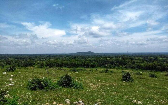 पश्चिम बंगाल के एक गांव के लोगों ने सामूहिक प्रयास से बंजर पहाड़ पर जंगल उगा दिया