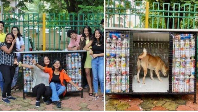 प्लास्टिक के कचरे से घर