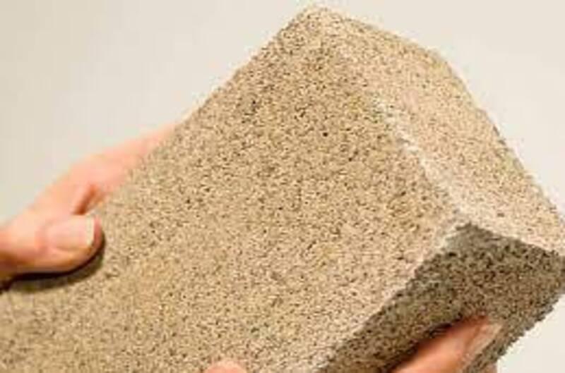 bio brick